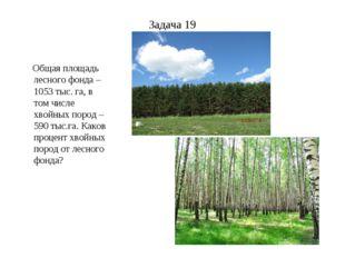 Задача 19 Общая площадь лесного фонда – 1053 тыс. га, в том числе хвойных пор
