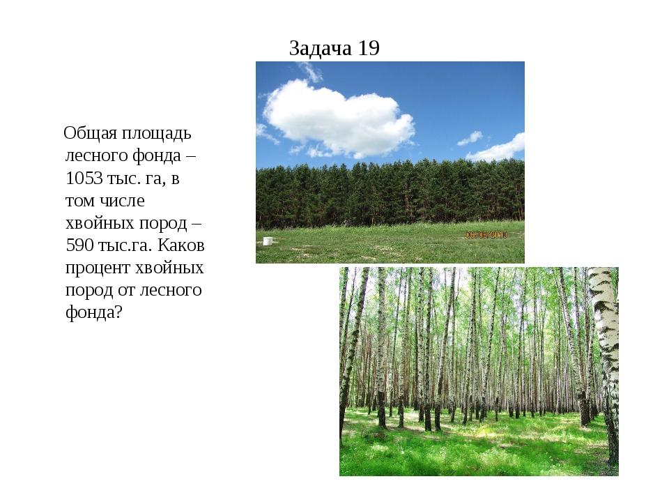 Задача 19 Общая площадь лесного фонда – 1053 тыс. га, в том числе хвойных пор...