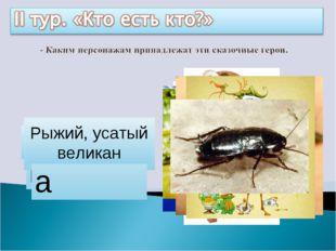 Айболит Бармалей Мойдодыр Цокотуха Каракула Барабек Тотошка, Кокошка Федора Р