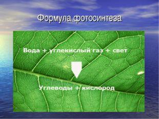 Формула фотосинтеза