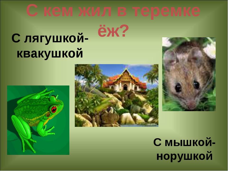 С кем жил в теремке ёж? С мышкой-норушкой С лягушкой- квакушкой