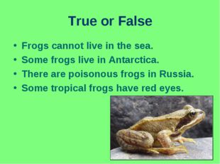 True or False Frogs cannot live in the sea. Some frogs live in Antarctica. Th