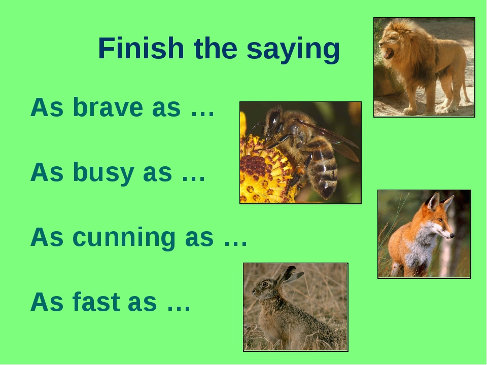 Finish the saying As brave as … As busy as … As cunning as … As fast as …