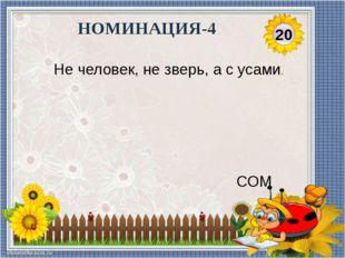 30 НОМИНАЦИЯ- 4 С хвостом, а не зверь, С перьями, а не птица. РЫБА