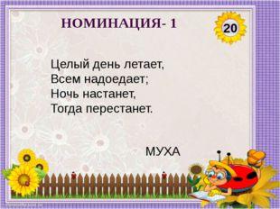 20 НОМИНАЦИЯ- 1 Целый день летает, Всем надоедает; Ночь настанет, Тогда перес
