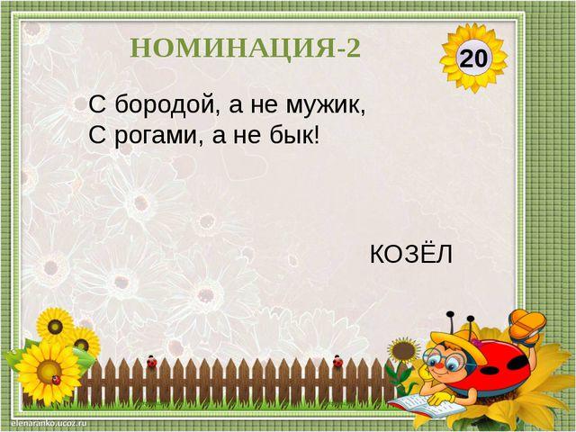 30 НОМИНАЦИЯ- 2 Маленький шарик Под лавкой шарит. МЫШЬ