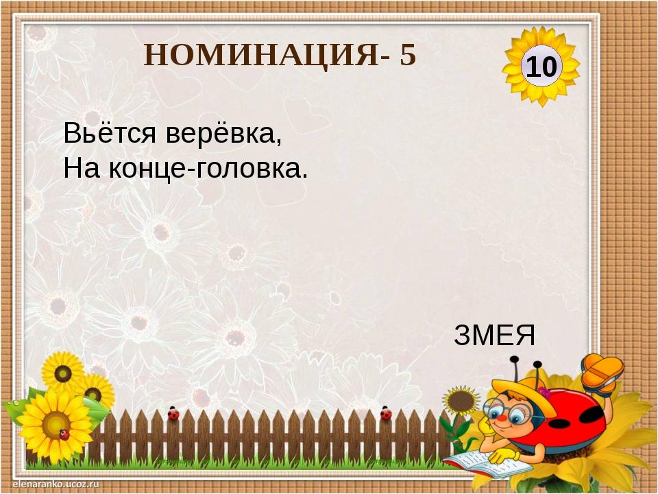 20 НОМИНАЦИЯ- 5 У кого глаза на рогах, А дом на спине? УЛИТКА