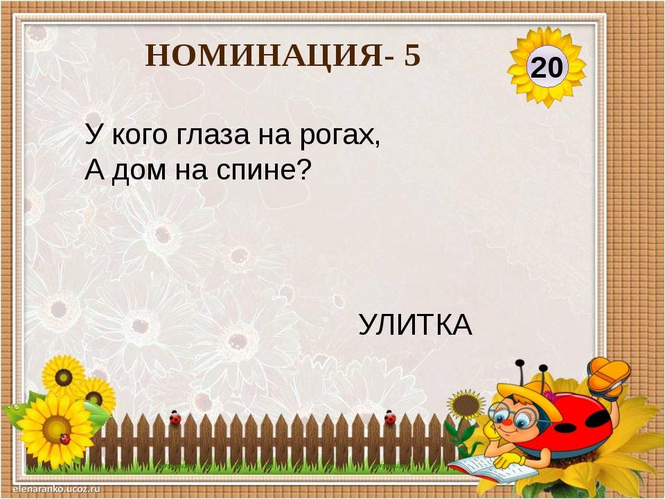30 НОМИНАЦИЯ-5 В реке большая драка: Поссорились два… РАКА