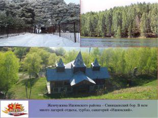 Жемчужина Ишимского района – Синицынский бор. В нем много лагерей отдыха, ту