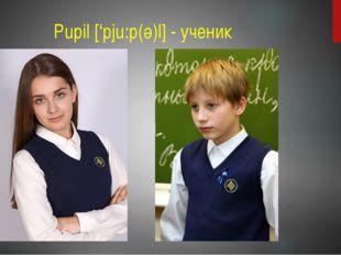 Pupil ['pju:p(ә)l] - ученик