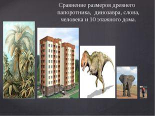 Сравнение размеров древнего папоротника, динозавра, слона, человека и 10 этаж
