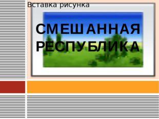 СМЕШАННАЯ РЕСПУБЛИКА