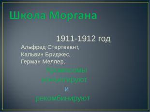 1911-1912 год Альфред Стертевант, Кальвин Бриджес, Герман Меллер. Хромосомы к