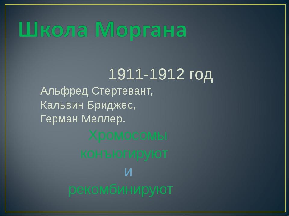 1911-1912 год Альфред Стертевант, Кальвин Бриджес, Герман Меллер. Хромосомы к...