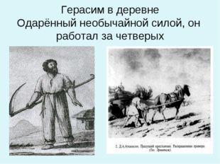 Герасим в деревне Одарённый необычайной силой, он работал за четверых