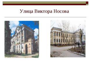 Улица Виктора Носова