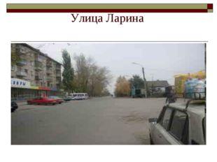 Улица Ларина