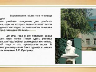Воронежское областное училище культуры. В этом учебном заведении два учебных