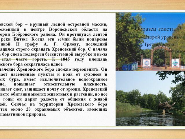 Хреновской бор – крупный лесной островной массив, расположенный в центре Вор...