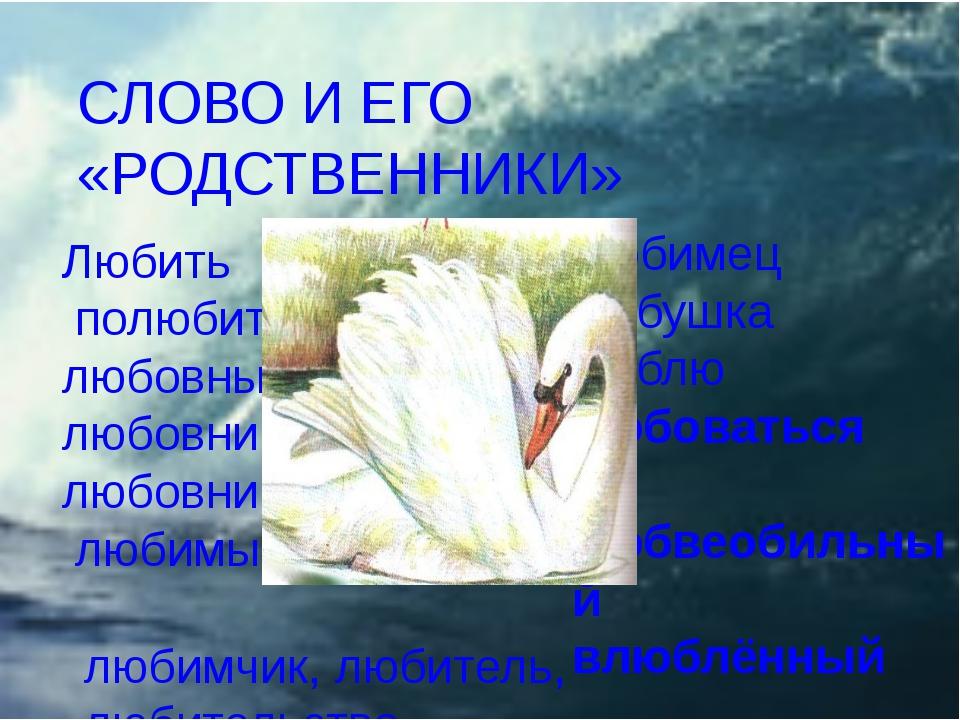 Любить полюбить любовный любовница любовник любимый Любимец любушка люблю люб...
