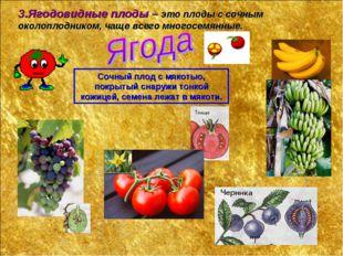3.Ягодовидные плоды – это плоды с сочным околоплодником, чаще всего многосемя