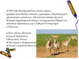 В 2002годуМеждународным союзом охраны природыэтотвидбыл отнесён к катего
