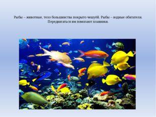 Рыбы – животные, тело большинства покрыто чешуёй. Рыбы – водные обитатели. Пе