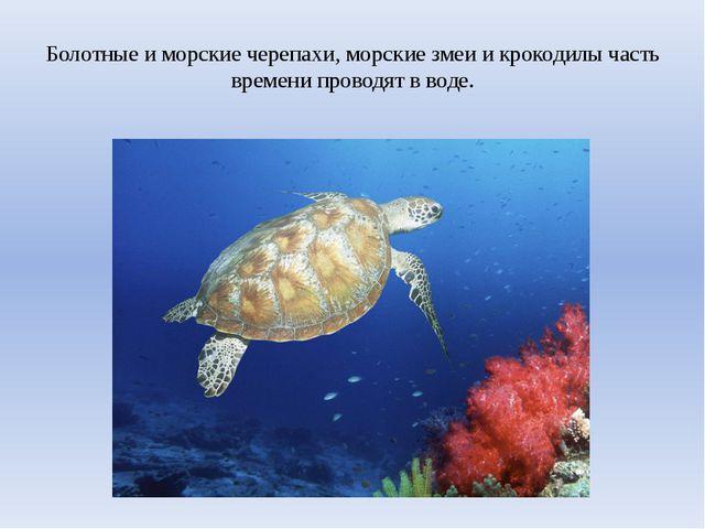 Болотные и морские черепахи, морские змеи и крокодилы часть времени проводят...