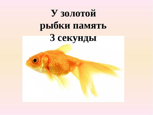 У золотой рыбки память 3 секунды