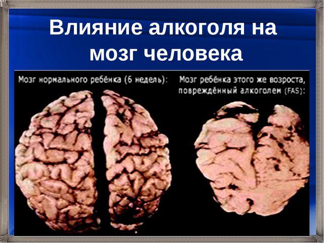 Влияние алкоголя на мозг человека