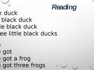 I have I have got I have got a frog I have got three frogs A duck A black du