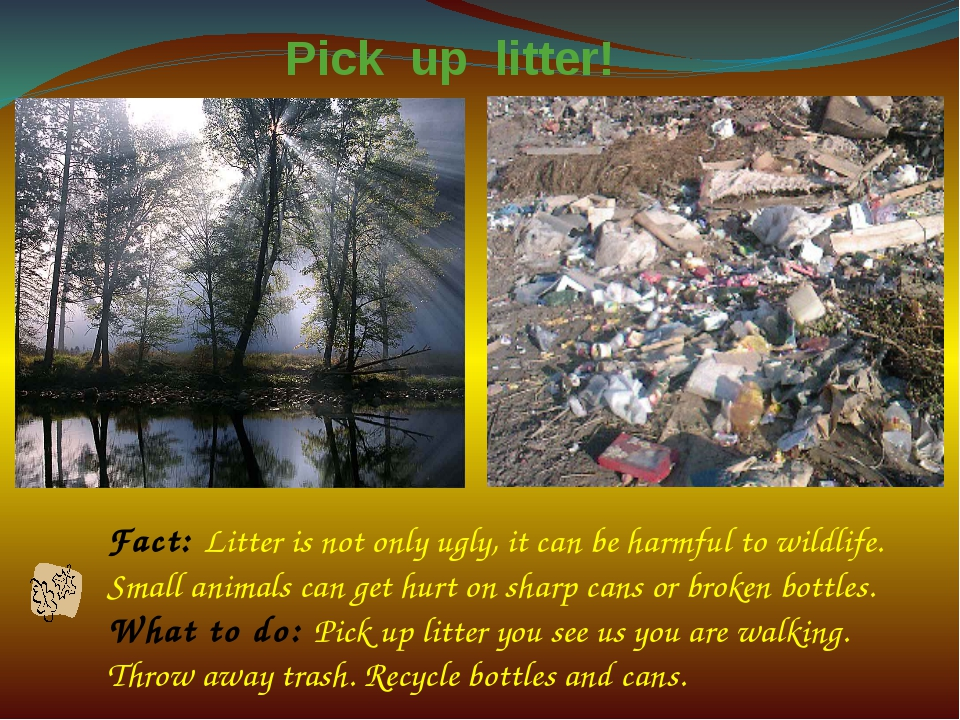 Fact: Litter is not only ugly, it can be harmful to wildlife. Small animals c...
