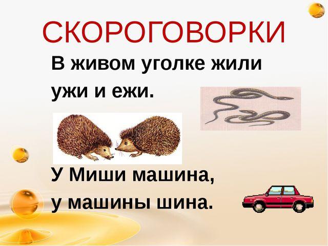 В живом уголке жили ужи и ежи. У Миши машина, у машины шина. http://freeppt.r...