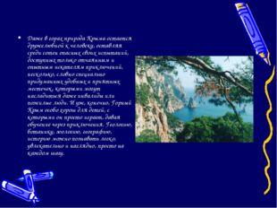 Даже в горах природа Крыма остается дружелюбной к человеку, оставляя среди со