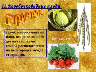 сухой, многосемянный плод, вскрывающийся двумя створками, семена располагаютс