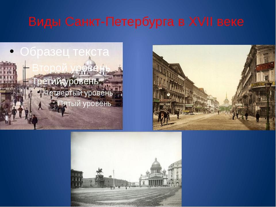 Виды Санкт-Петербурга в XVII веке