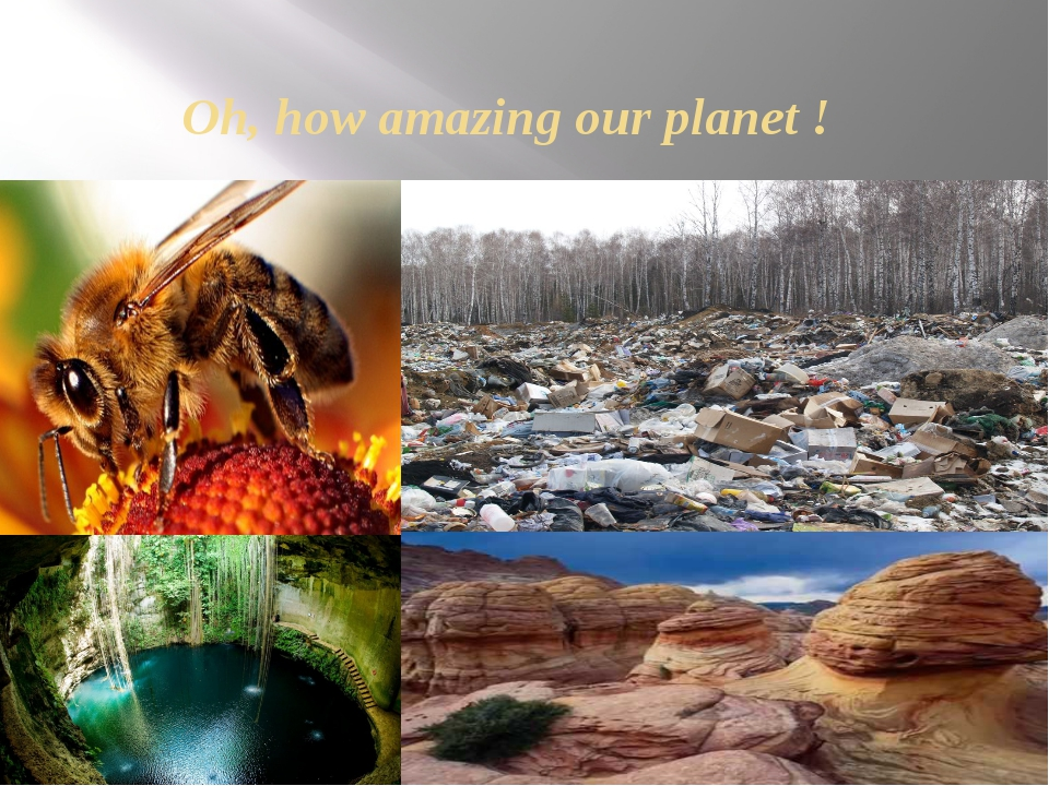 Oh, how amazing our planet !