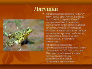 Лягушки Лягушки распространены по всему миру, кроме арктических районов, юга