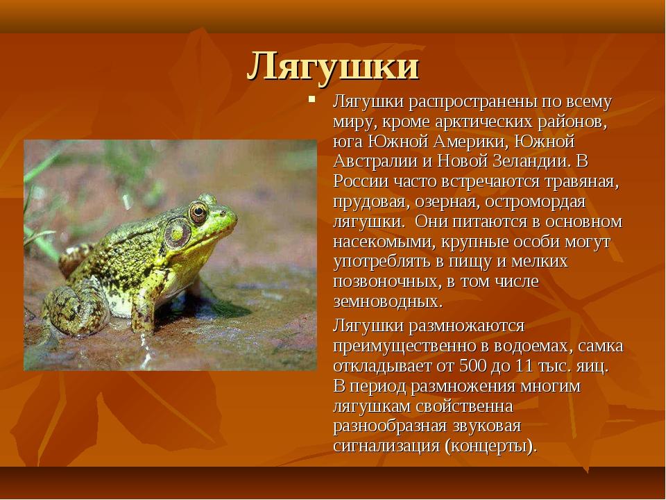 Лягушки Лягушки распространены по всему миру, кроме арктических районов, юга...