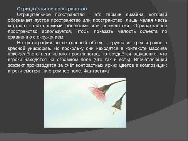 Отрицательное пространство Отрицательное пространство - это термин дизайна, к...