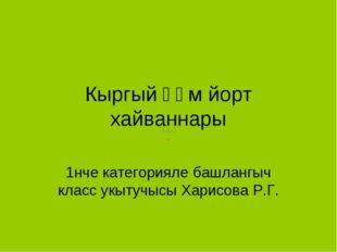 Кыргый һәм йорт хайваннары 1нче категорияле башлангыч класс укытучысы Харисов