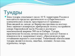 Тундры Зона тундры охватывает около 10 % территории России и находится в пред
