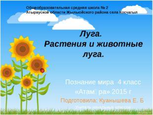 Луга. Растения и животные луга. Познание мира 4 класс «Атамұра» 2015 г Подгот