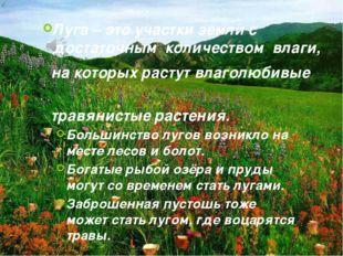 Луга – это участки земли с достаточным количеством влаги, на которых растут в