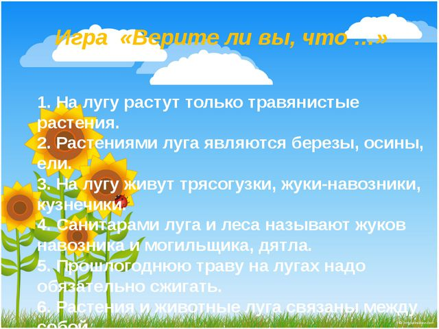 Игра «Верите ли вы, что …» 1. На лугу растут только травянистые растения. 2....