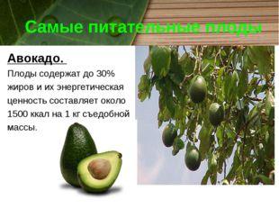 Самые питательные плоды Авокадо. Плоды содержат до 30% жиров и их энергетичес