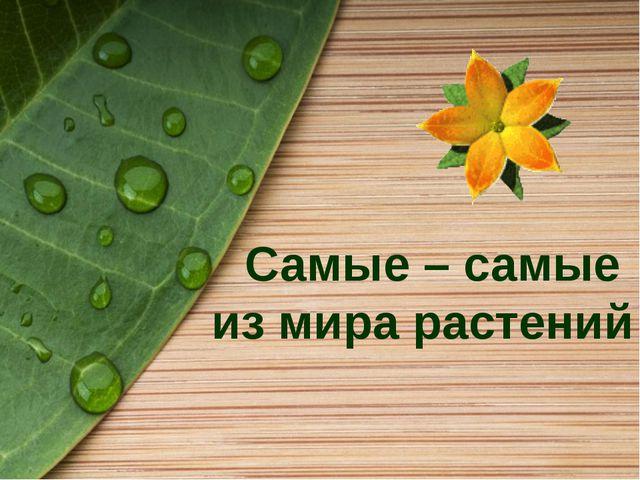Самые – самые из мира растений