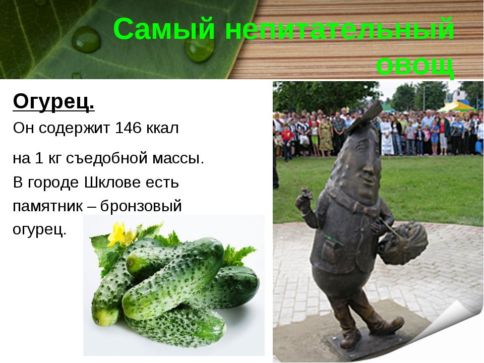 Самый непитательный овощ Огурец. Он содержит 146 ккал на 1 кг съедобной массы...