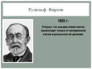 Рудольф Вирхов 1855 г. Открыл, что каждая новая клетка происходит только от м