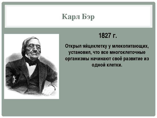 Карл Бэр 1827 г. Открыл яйцеклетку у млекопитающих, установил, что все многок...